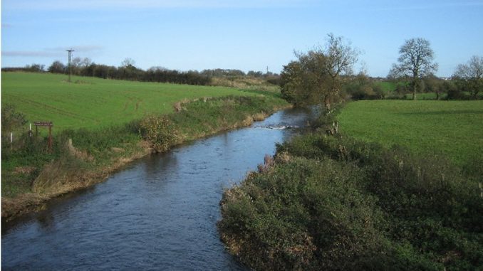 River pollution in Northern Ireland is on the rise during lockdown as people flush waster water contaminated with paint and other DIY materials down the incorrect drains