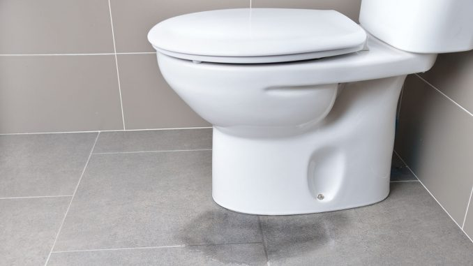 Carrying our a repair to a toilet bowl crack can be straightforward when using a ceramic-filled epoxy putty